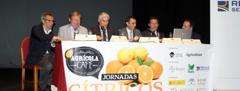 jornada-agricola-cafe-noticia-1b