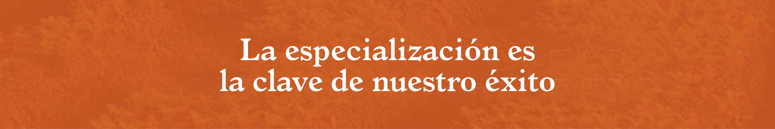 banner-naranja4