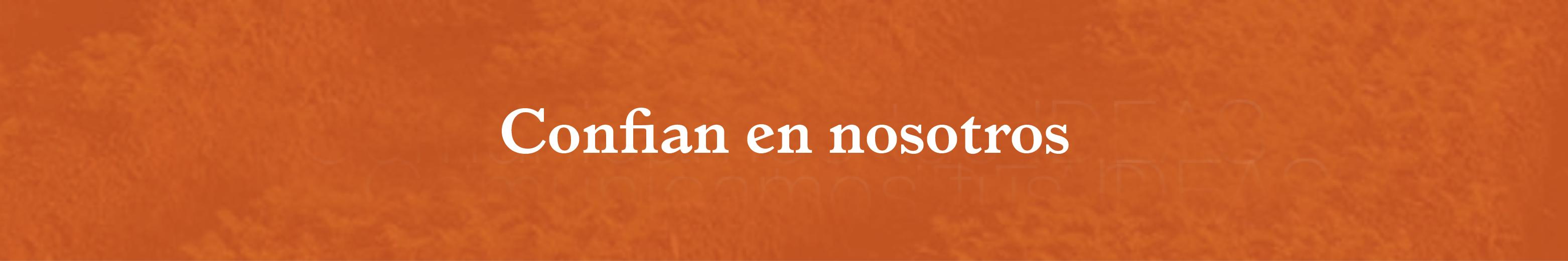 banner-naranja5