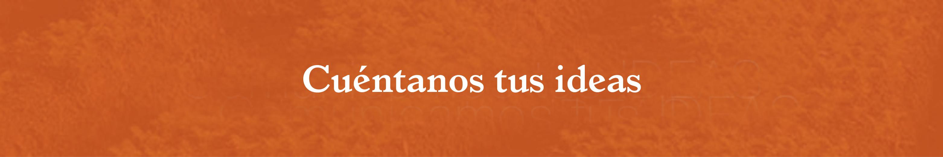banner-naranja6